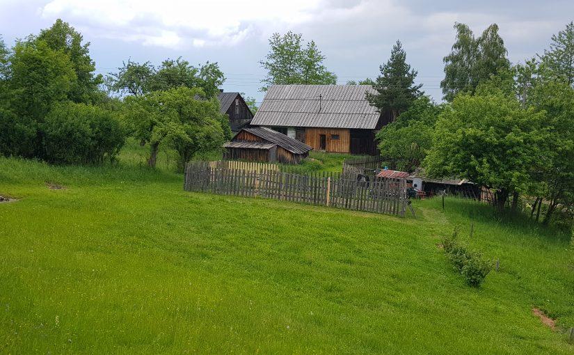 1900 log farmhouse to restore